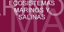Ecosistemas salinos y marinos
