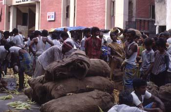Mercado de maíz, Calcuta, India