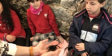 2020_02_27_3º visita Insectpark (5)_CEIP FDLR_Las Rozas 30