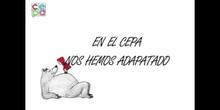 RECOPILACIÓN DEL CONCURSO EL CEPA CUENTA EN CASA