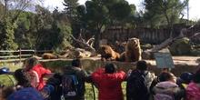 Excursión al zoo 5 años, 1º y 2º Luis Bello 22