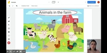 Farm animals-vocabulary