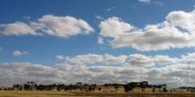 Llanura australiana, Australia