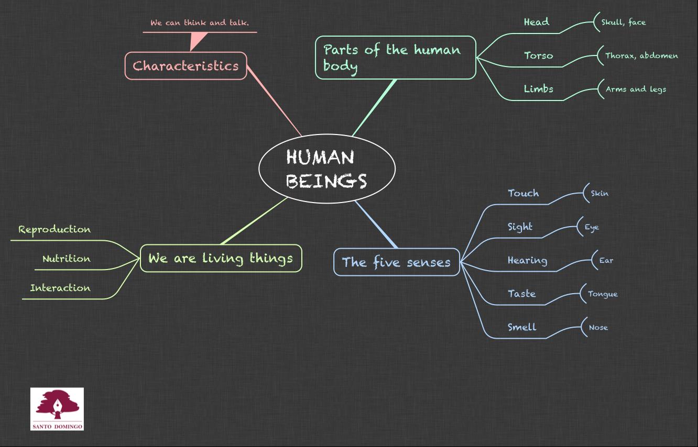 NS_HUMAN BEINGS_3