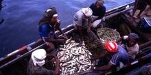 Pescadores en el puerto de Hodeidah, Yemen