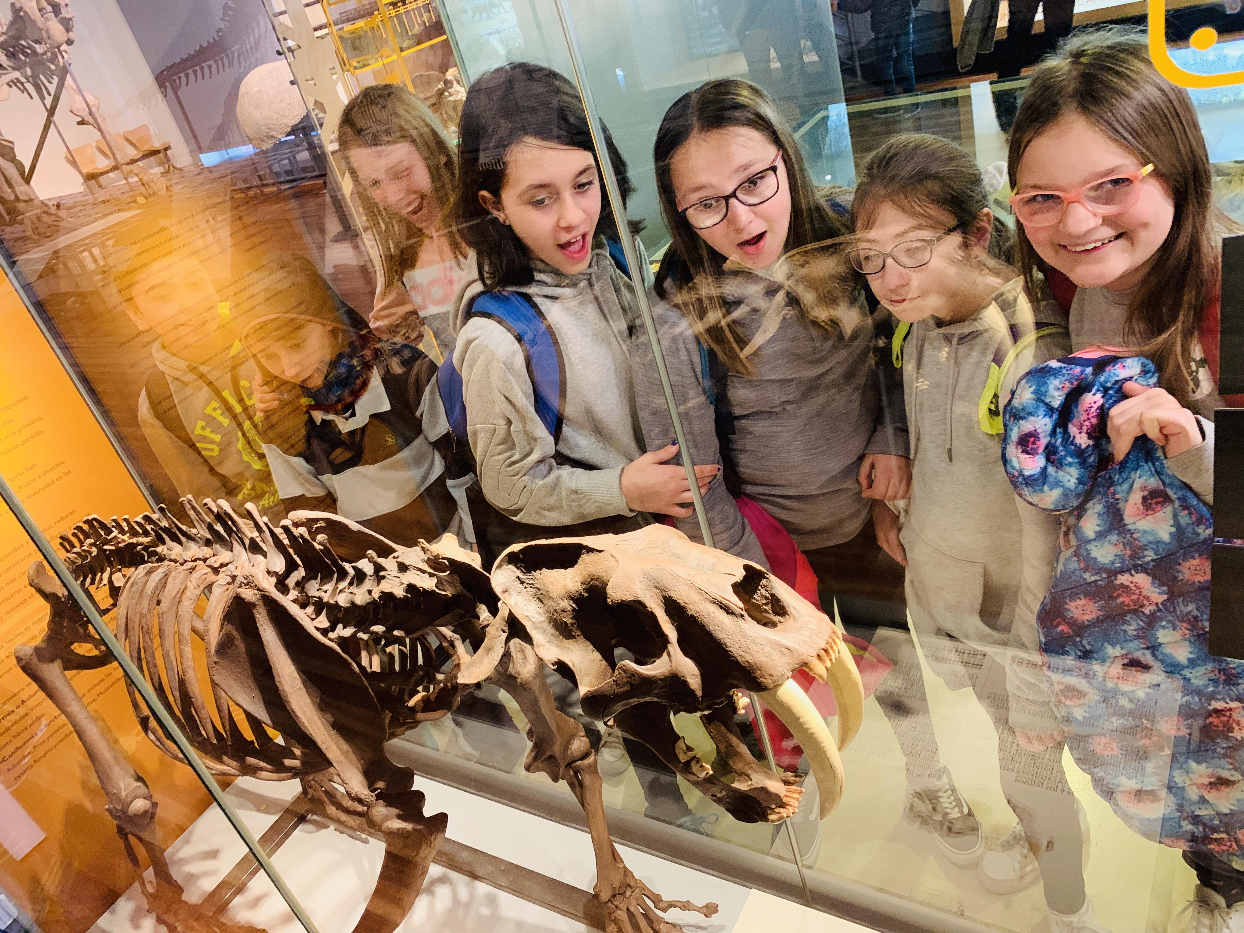 Excursión al Museo Nacional de Ciencias Naturales 3