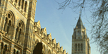 Museo Nacional de Historia Natural de Londres, Inglaterra