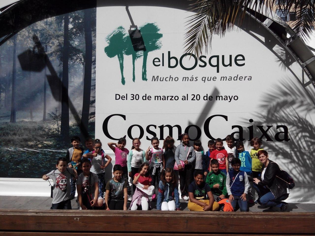 Visita a la exposición El Bosque. 1º 2º Primaria. CEIP Pinocho. 2016/17 3