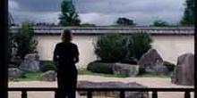 Mujer observando el paisaje desde un mirador