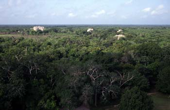 Vista de Chichén Itzá desde El Castillo o Pirámide de Kukulcán,
