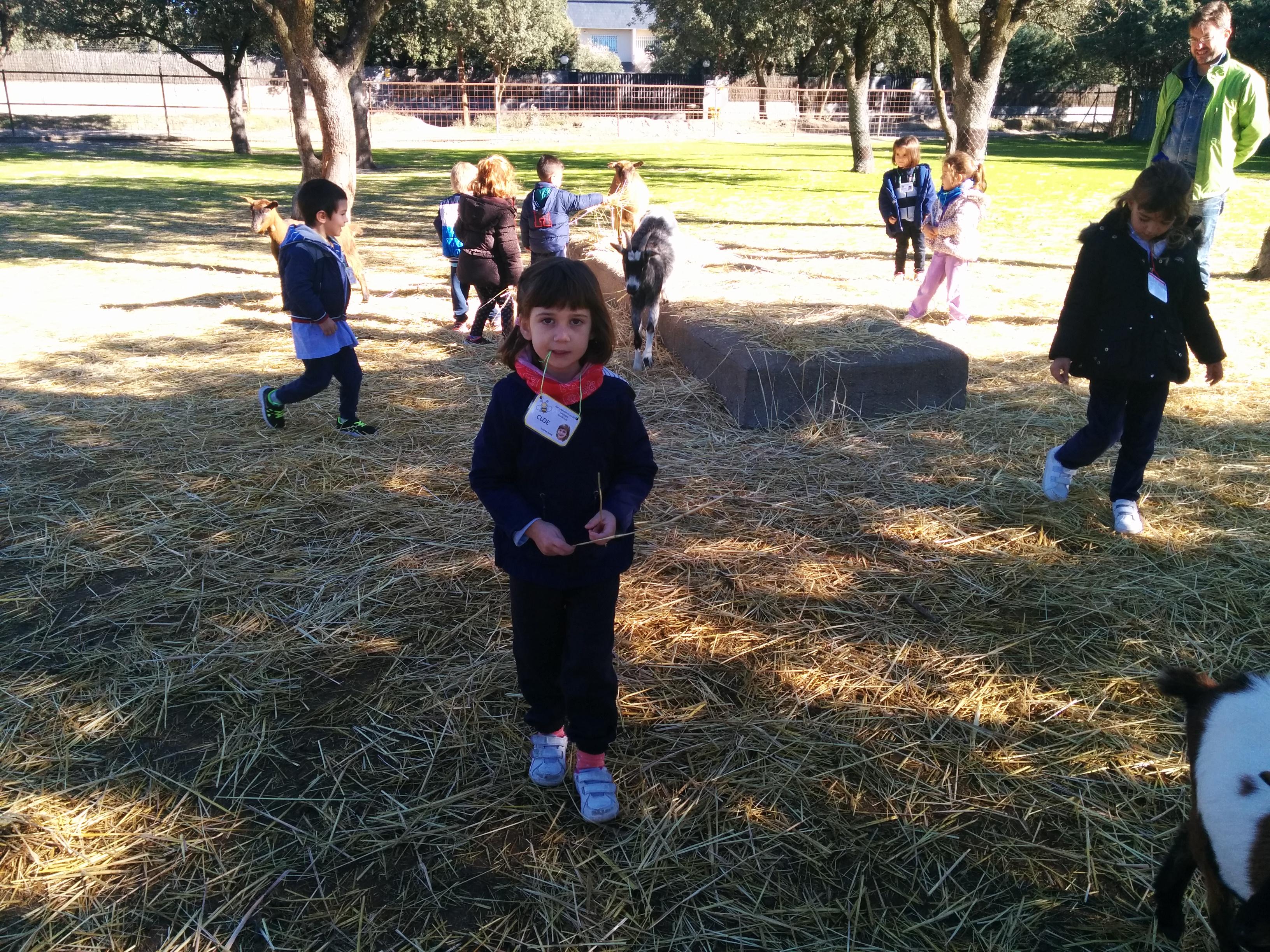2016_inf 4 años a visita la granja 37