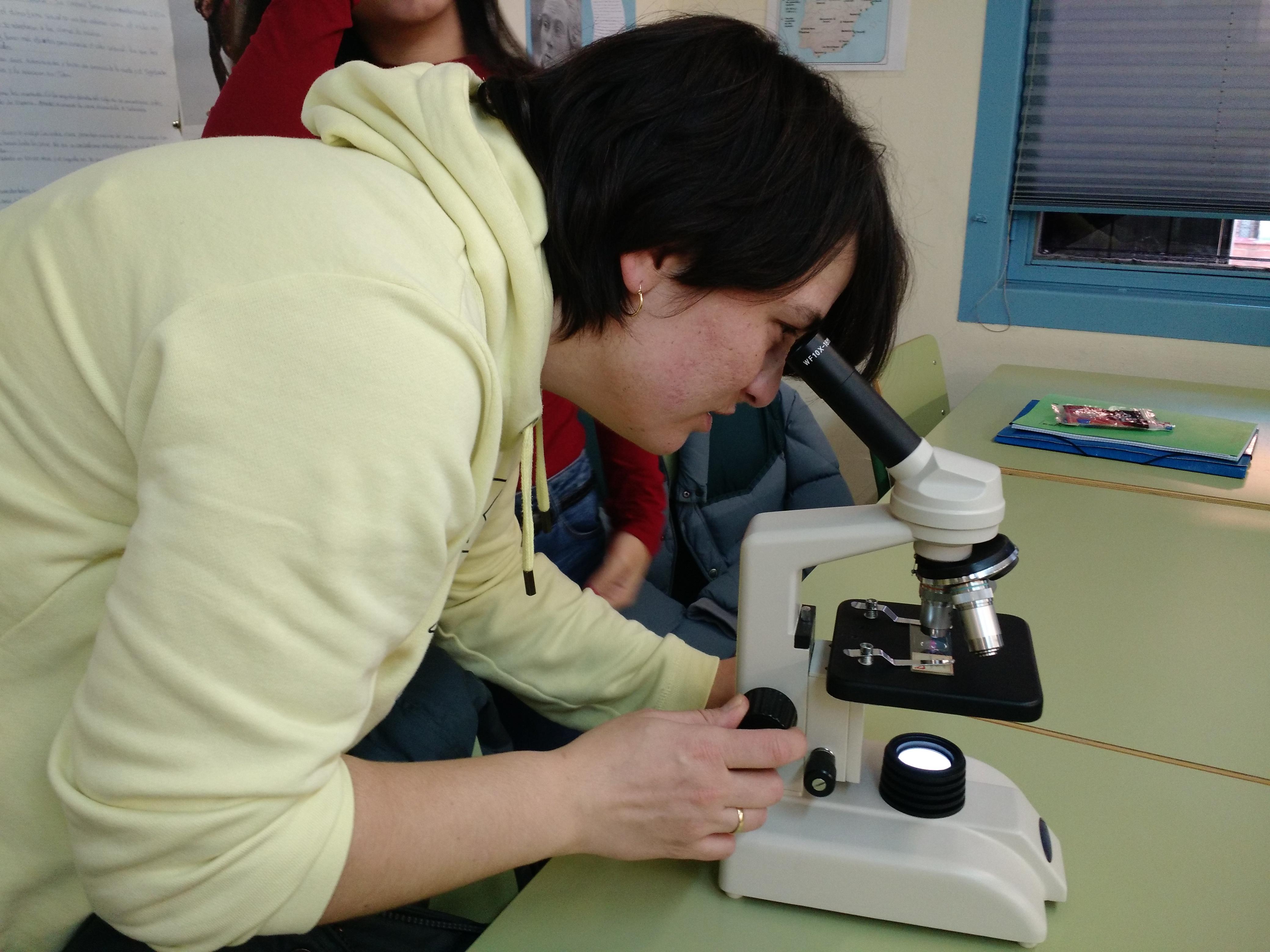 Usando el microscopio 2