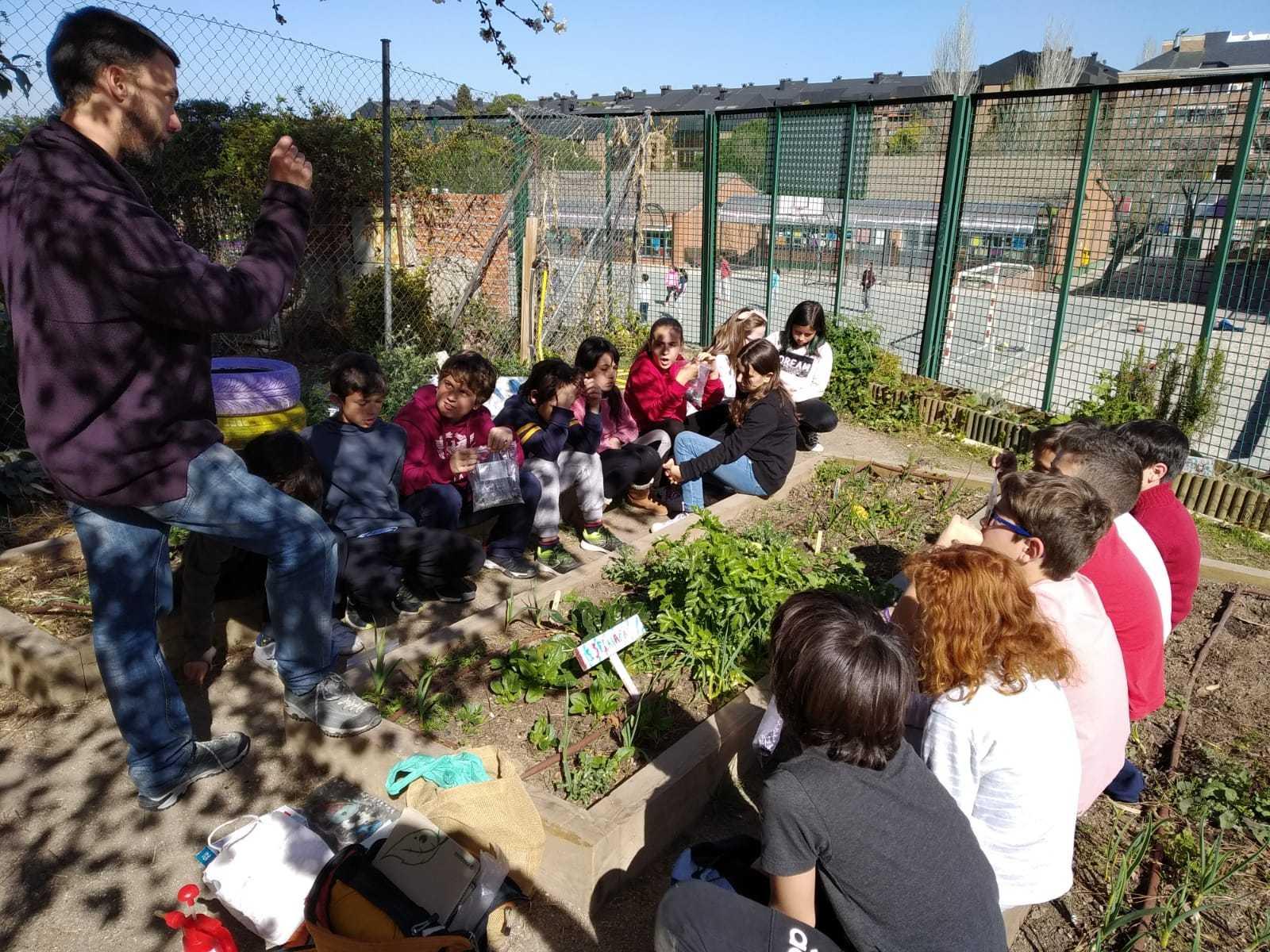 2019_02_24_Quinto termina febrero con las actividades de huerto_CEIP FDLR_Las Rozas_2019 2