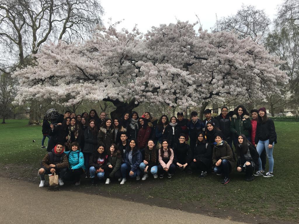Viaje a Cambridge marzo 2019 12