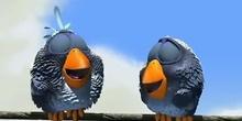 Pixar-pajaritos