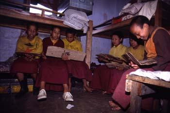 Alumnos del Monasterio de Pemayangste durante el estudio en su d