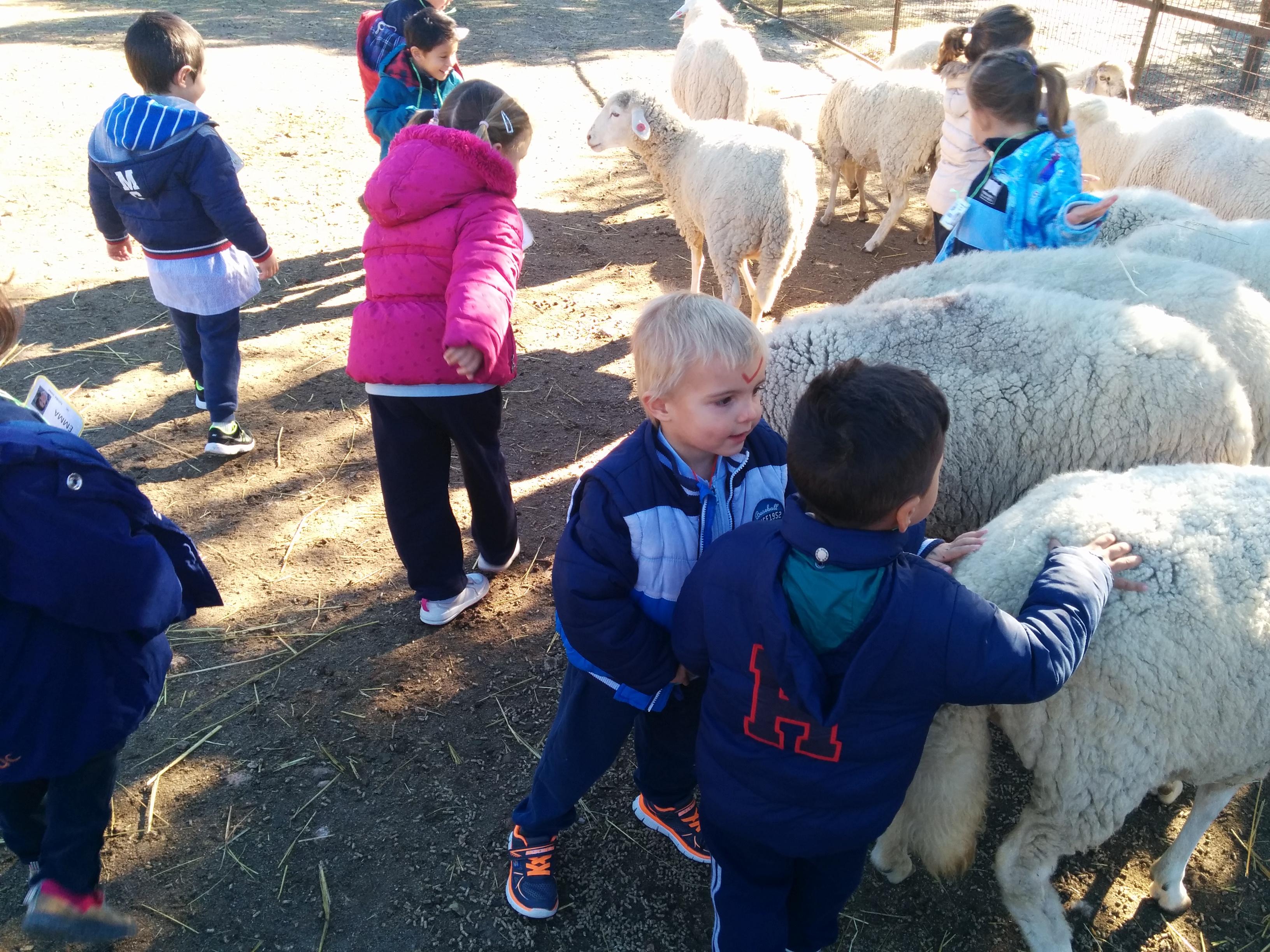 2016_inf 4 años a visita la granja 24