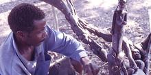 Escultor de ébano, Nacala, Mozambique