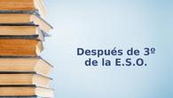IES María de Molina. Orientación. Información para los padres de los alumnos de 3º