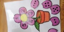 Flores asociación