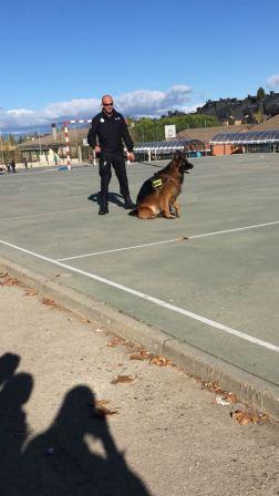 La Unidad Canina de la Policia Municipal de Las Rozas visita el cole_2_CEIP FDLR_Las Rozas_2017  4