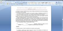UNIDAD 3. ELEMENTOS DE LA MÚSICA: RITMO Y MELODÍA, PARTE VII