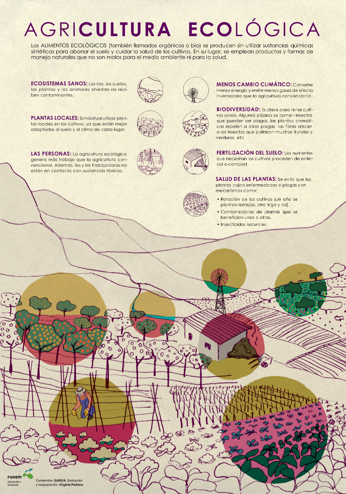 Comida agroecológica
