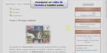 Moodle 2: Cómo incorporar un vídeo de Youtube