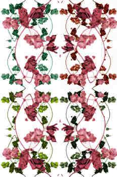 Opción cuarta de ramas en tres colores