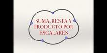 Matrices 2 - Suma y producto por escalares