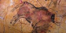 Arte rupestre de la Cueva de Altamira, Santillana del Mar, Canta
