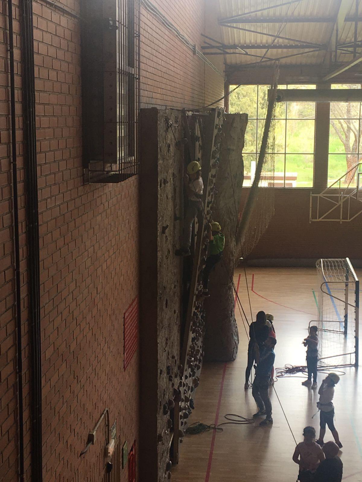 Cuarto disfruta de actividades de multiaventura_CEIP FDLR_Las Rozas 4