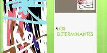 LOS DETERMINANTES I