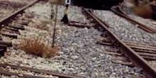 Tren de Cercanias