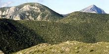 Zona de arbustos en Sierra de Guara, Huesca