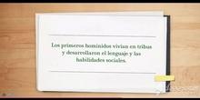 PRIMARIA - 4º - PREHISTORIA - CIENCIAS SOCIALES - FORMACIÓN