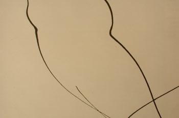 Líneas curvas