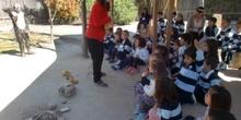 2017_04_04_Infantil 4 años en Arqueopinto 1 15