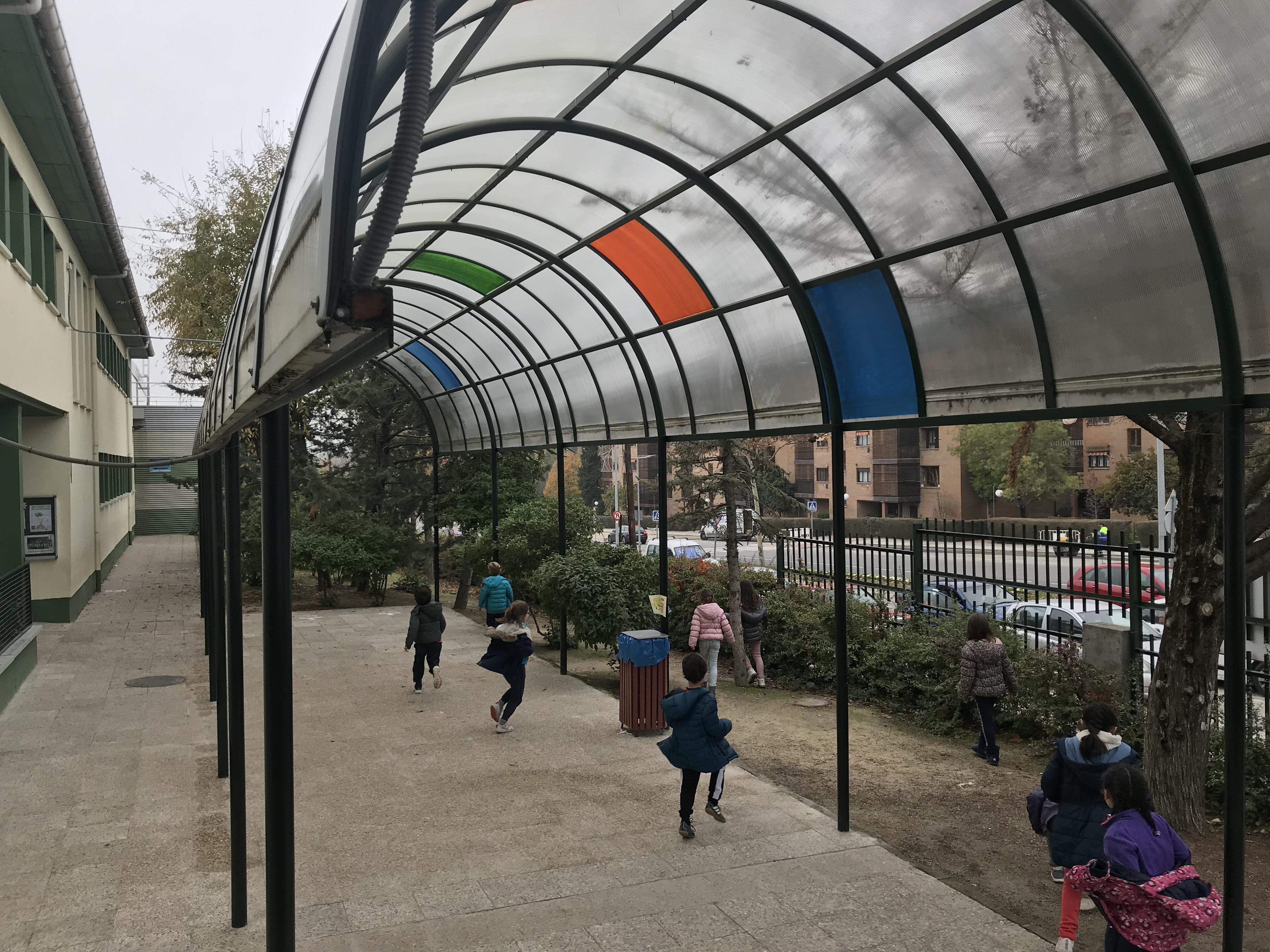 2018_12_05_1º Y 2º TRABAJAN LA BIODIVERSIDAD_PROYECTO THE GREAT PLANT HUNT_CEIP FDLR_Las Rozas 3
