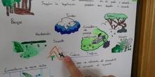 Ecosistemas - Claudia D