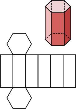 Prisma regular y su desarrollo