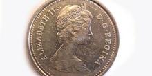 Dolar canadiense,Cara