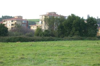 Zona verde urbana
