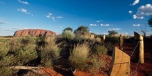 Parque nacional Uluru-Kata Tjuta, Australia