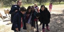 """Granja Escuela """"El Álamo"""" 3º y 4º EP_1 38"""