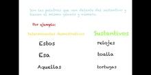 PRIMARIA - 3º - LOS DETERMINANTES DEMOSTRATIVOS - LENGUA - IRENE