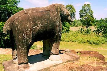 Elefante de piedra en la selva, Aangkor, Camboya