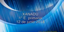Xanadú 1º E. Primaria curso 2017/18