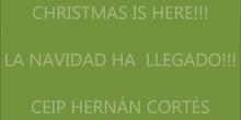 I Concurso de árboles de Navidad 16/17