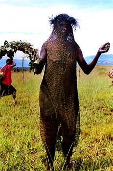 Mujer lani vestida con malla cubriendo cuerpo, Irian Jaya, Indon